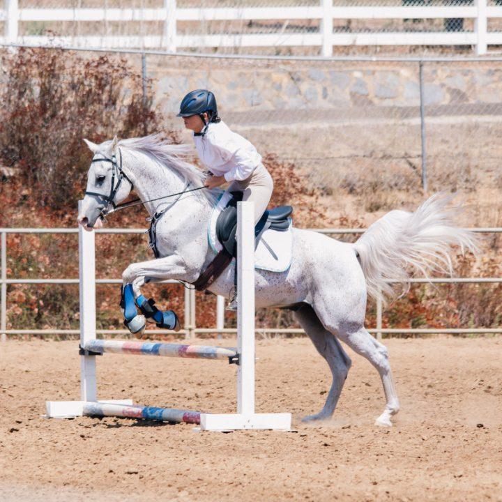 Jamul Saint Pius X arena horse show